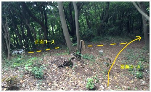 ohirayama_tonomi13.jpg