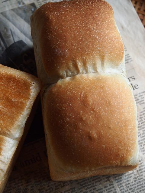 大人のサンドイッチ4