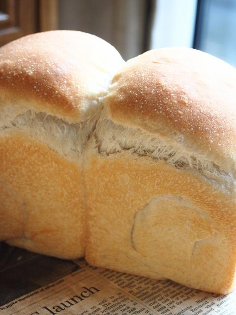 大人のサンドイッチ5