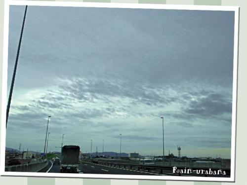 今日はドンヨリ曇り空