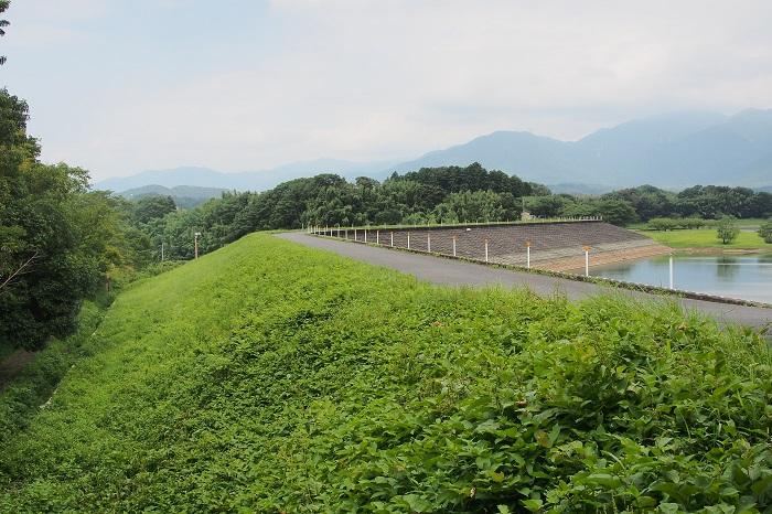 05日野川脇