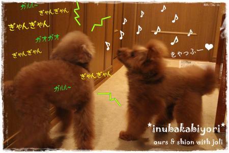 hanabi3_s.jpg