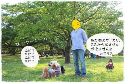 sanpoaruaru3s.jpg