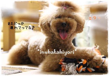 uminohi14s.jpg