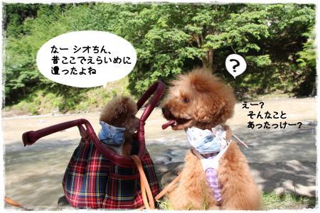 uminohi4s.jpg