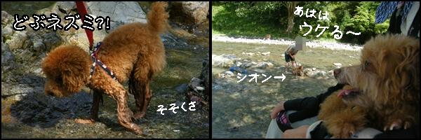 uminohi7.jpg