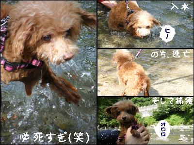 uminohi9.jpg