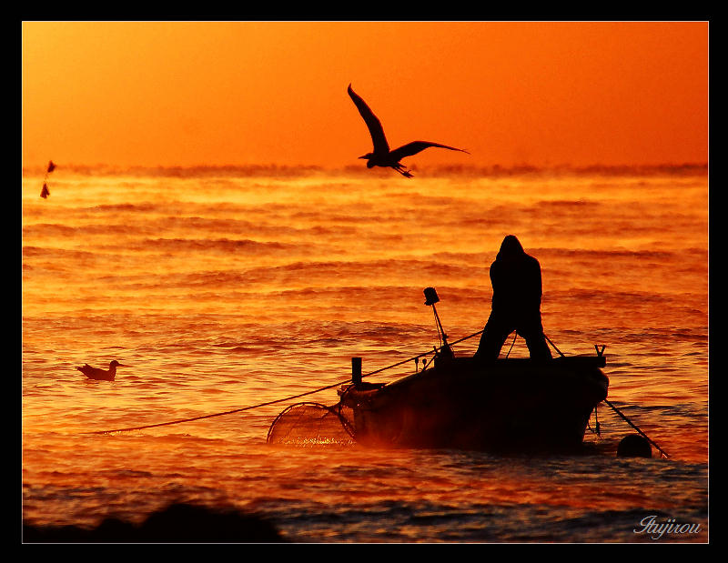 漁夫と鳥たち