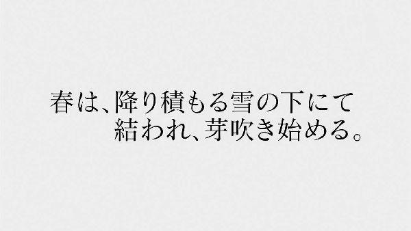 俺ガイル2-13 (15)