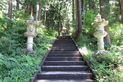 戸隠神社参道