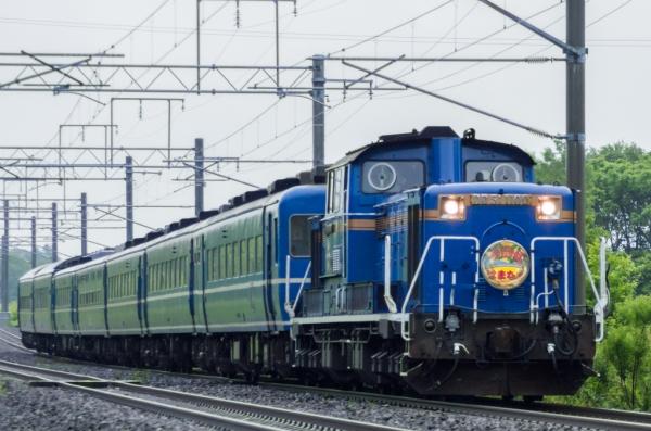 IMGP2045-1.jpg