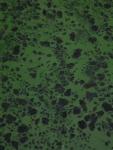 11.水藻-08D 1306q
