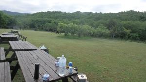 アポイ山麓キャンプ場の朝