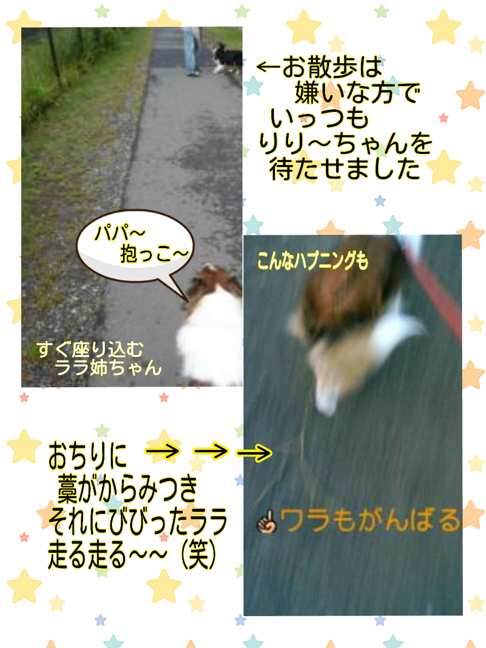 2015-07-09-13-35-29_deco.jpg
