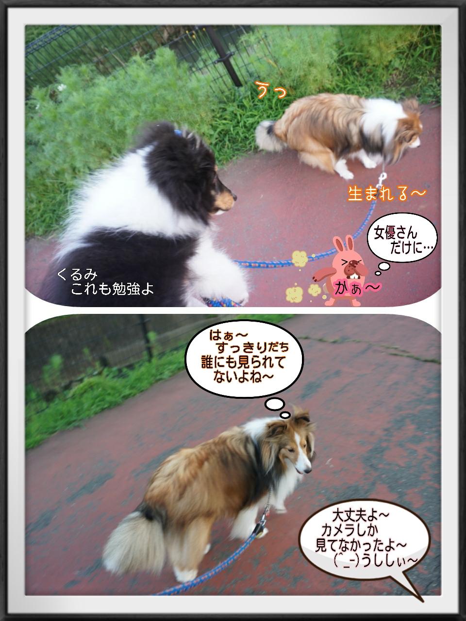 2015-07-11-03-11-03_deco.jpg