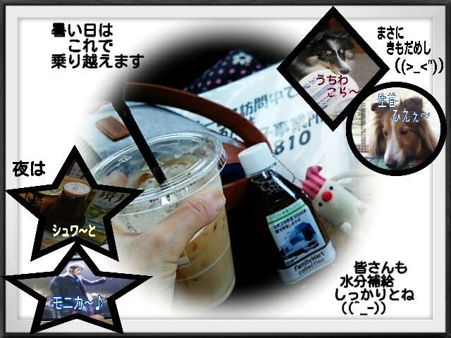 2015-07-11-06-50-39_deco.jpg