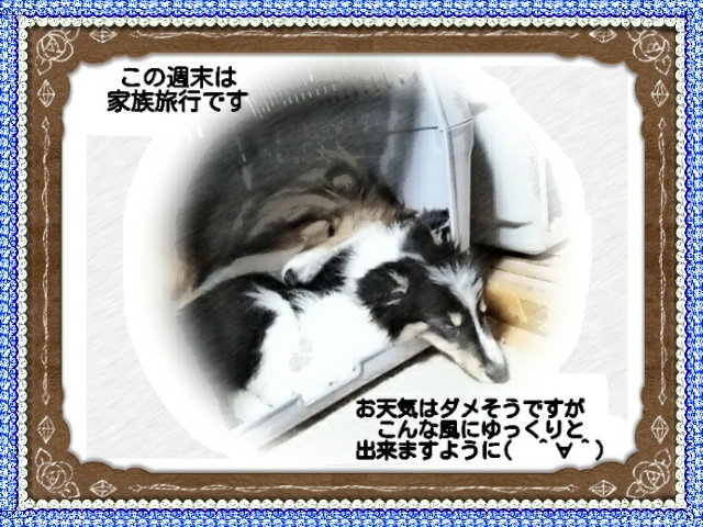 2015-07-14-01-52-10_deco.jpg