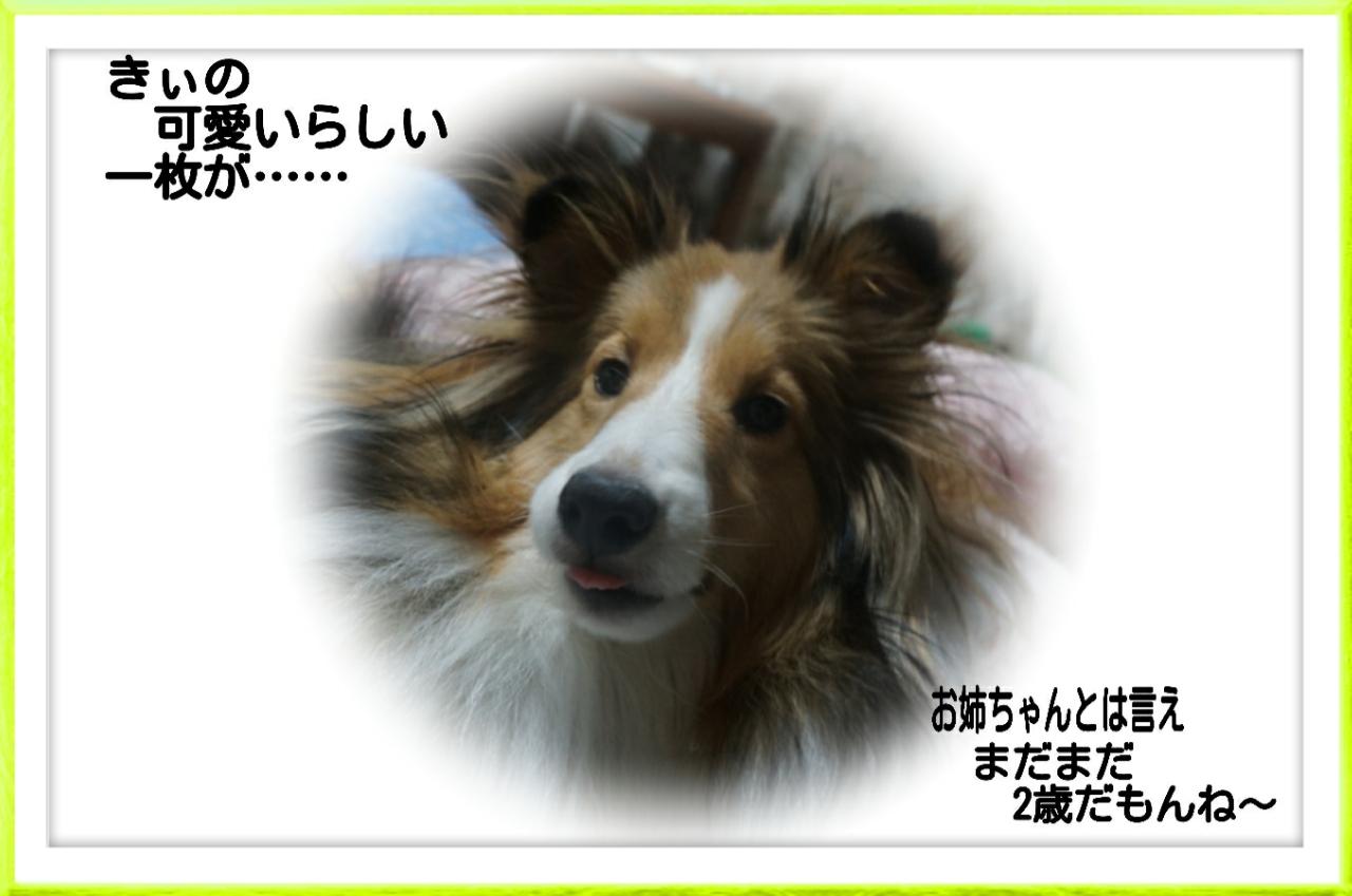 2015-08-04-01-30-38_deco.jpg