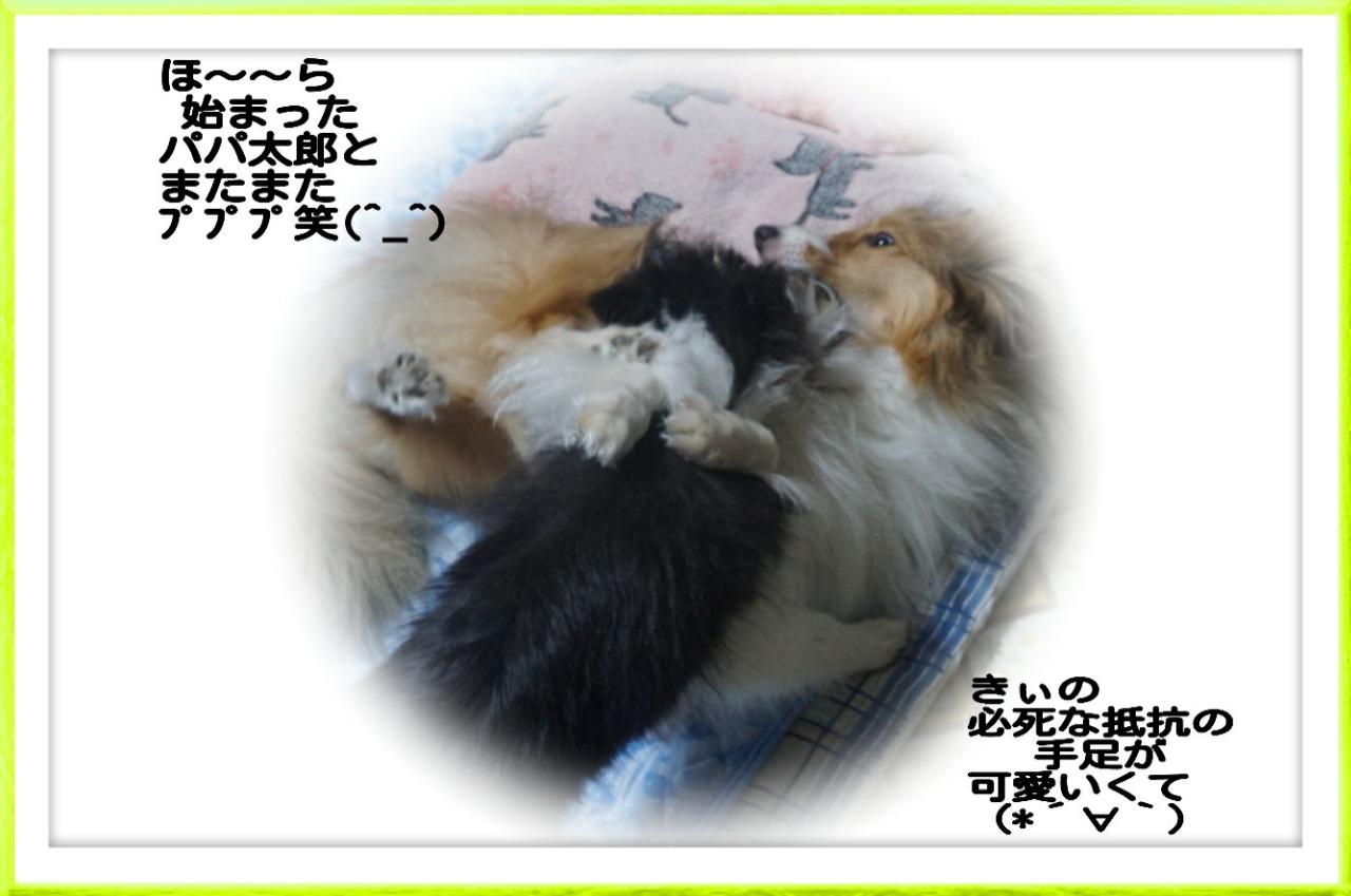 2015-08-04-01-40-19_deco.jpg
