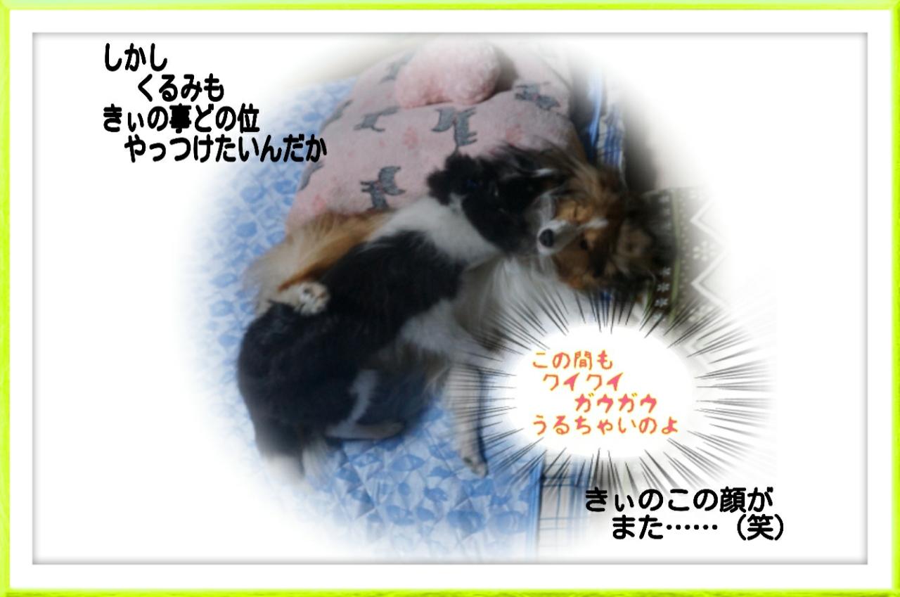 2015-08-04-01-56-46_deco.jpg