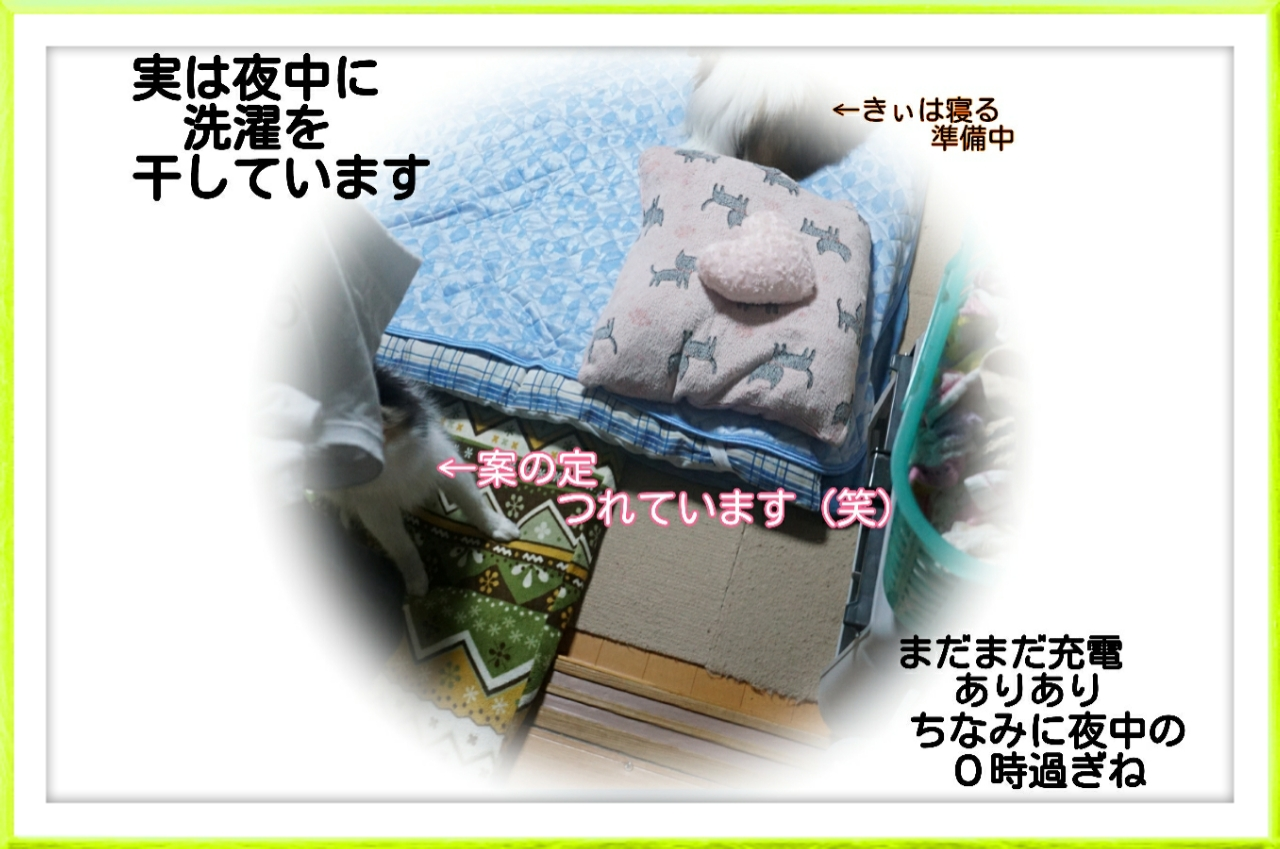 2015-08-04-02-16-39_deco.jpg
