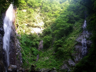 本棚と枝沢の滝