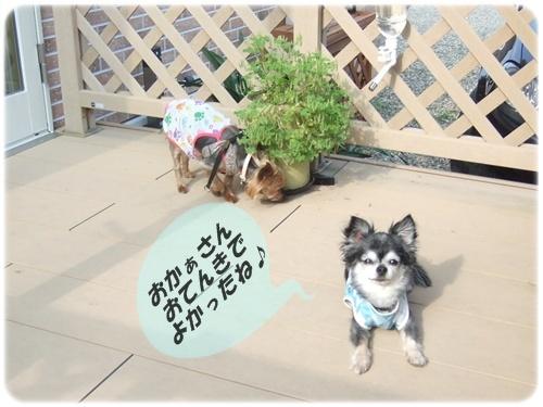 2015_0710みらい記念日カフェ0018