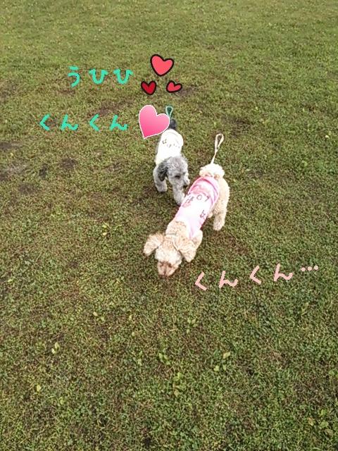 2015-07-10-12-25-21_deco.jpg