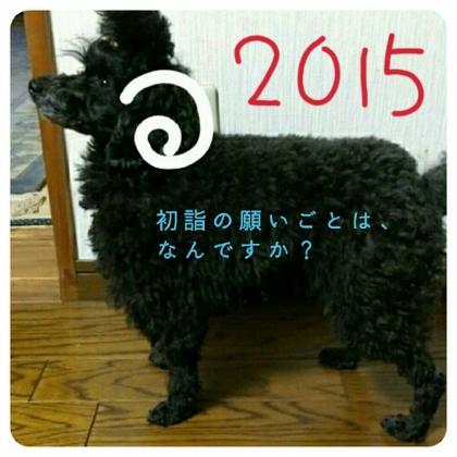 20150101 (420x420)