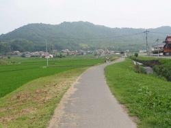 散歩20150624-4