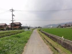 散歩20150624-5