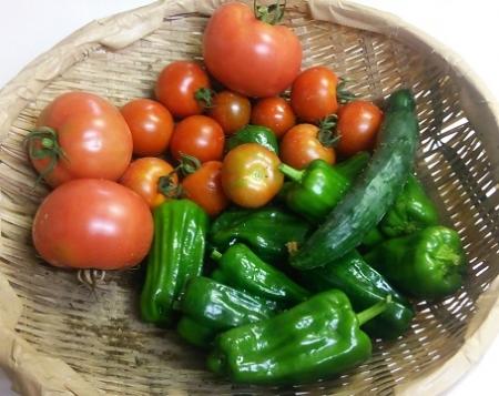 収穫 2015.07.08