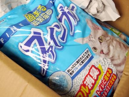 150718_cat08.jpg