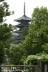 西円堂から五重塔