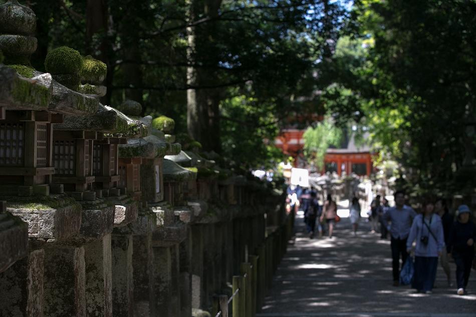 GW東大寺は京都並み-47