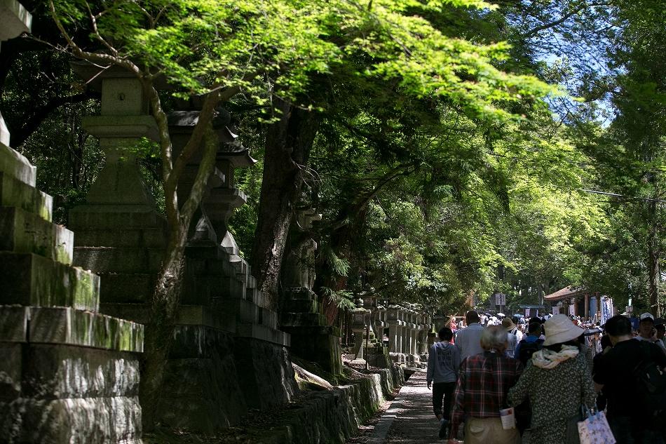 GW東大寺は京都並み-45