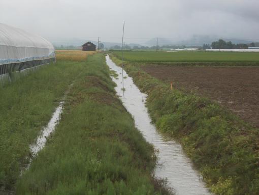 20150731_大雨後の排水路