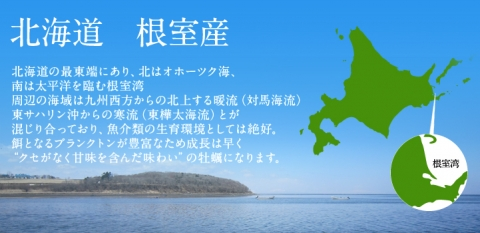 pic_nemuro01.jpg