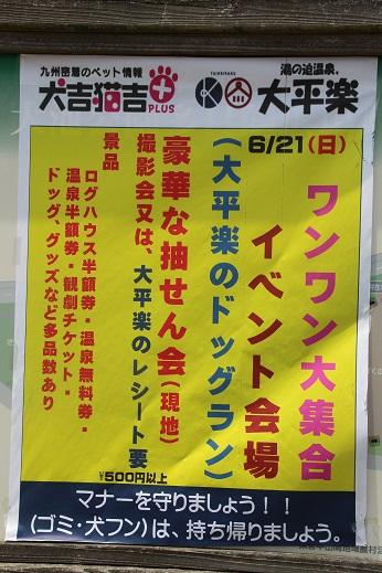 お友達編 2015-6-21-2
