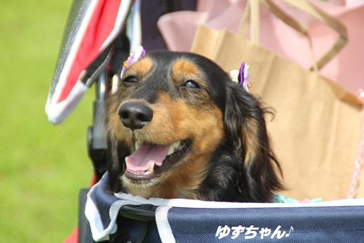 お友達編 2015-6-21-4