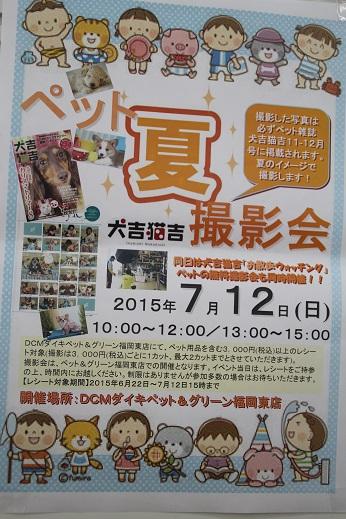 ダイキ1 2015-7-12-1