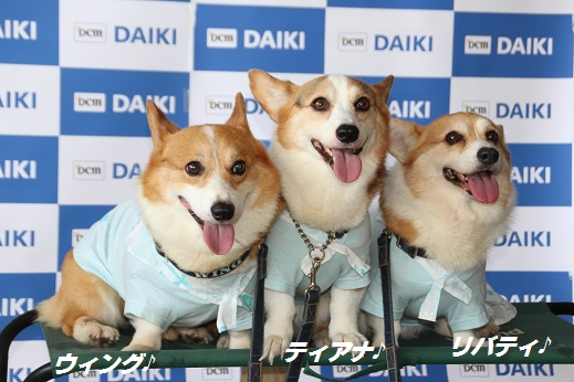 ダイキ1 2015-8-2-4