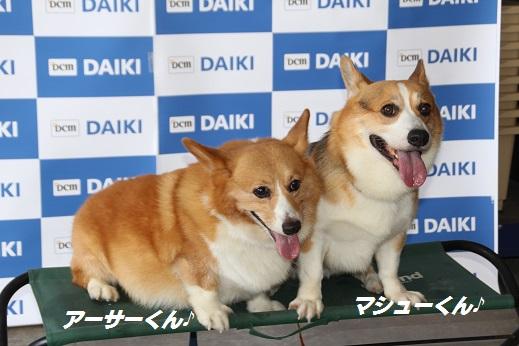 ダイキ1 2015-8-2-8
