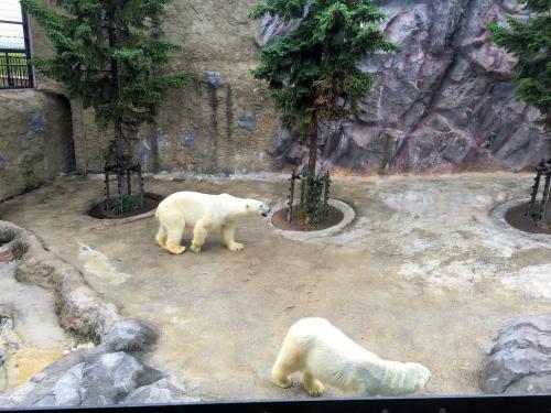Zoo 2015/7/21 1