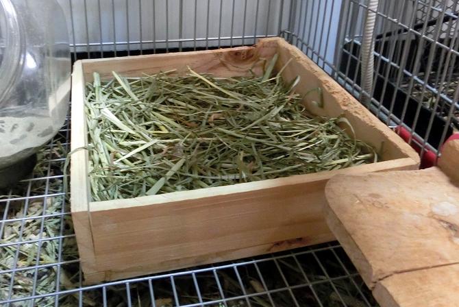 牧草ボックス