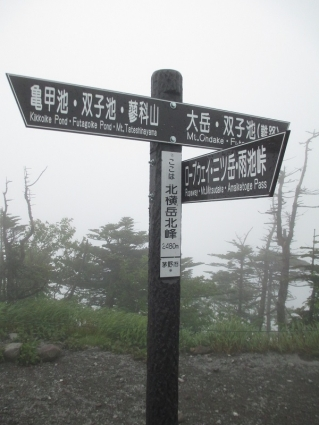 北アルプス(北横岳~天狗岳) 021