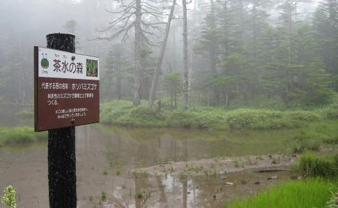 北八ヶ岳(北横岳~天狗岳)M 016-001
