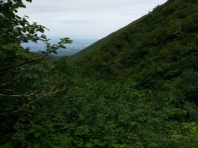 斜里岳旧道3