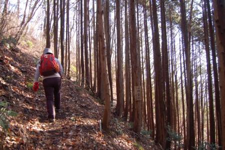 7焼森登山道