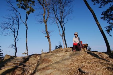 13焼森山